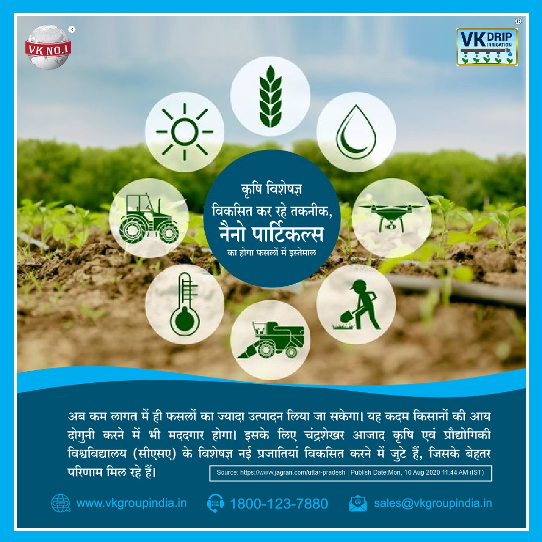 What is The Most Effective And Efficient System To Irrigate Home Vegetable Crops?